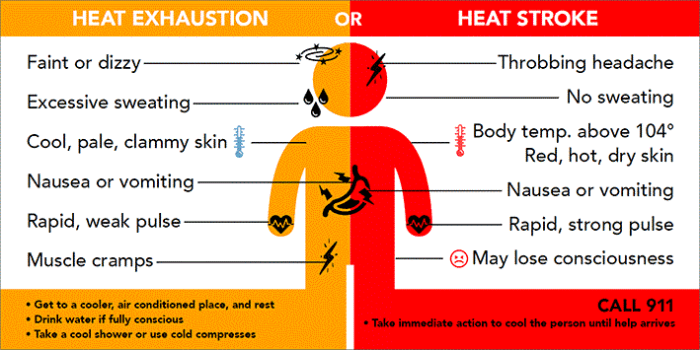 Protecting Yourself from Heat Stress   Diversified ...